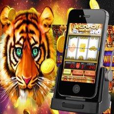 golden tiger + microgaming slots blackjacktwo.com
